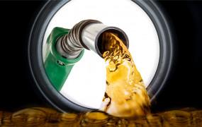 Fuel prices: पेट्रोल-डीजल के दाम में आज कोई बढ़ोतरी नहीं, जानें अपने शहर में तेल का भाव