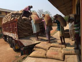 पंजाब, हरियाणा में 2 दिनों में किसानों से एमएसपी पर खरीदा 10.53 करोड़ का धान : केंद्र