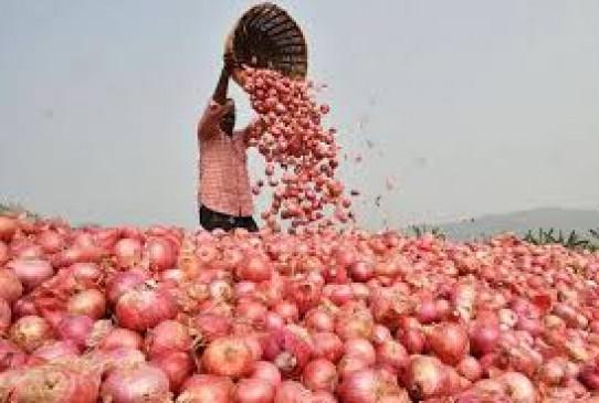कांग्रेस का राज्यव्यापी आंदोलन, प्याज निर्यात पर रोक से महाराष्ट्र में नाराजगी