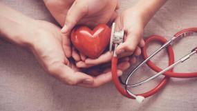 World Heart Day: इनएक्टिव लाइफस्टाइल के कारण 22 साल के युवा भी बन रहे हार्ट पेशेंट, समय पर व्यायाम और पौष्टिक खानपान जरूरी