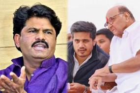 सोशल मीडिया पर भिड़े BJP और NCP विधायक, पडलकर बोले - शरद पवार के कंधे से नीचे उतर कर देखो रोहित