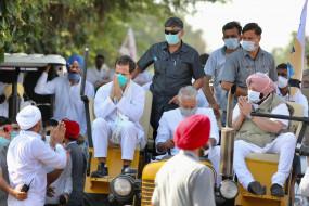 कृषि कानून का विरोध: खेती बचाओ यात्रा में शामिल हुए राहुल गांधी, बोले- कचरे के डब्बे में फेंक देंगे ये काला कानून