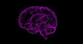 दिल्ली : मरीज के मस्तिष्क में सबसे अधिक जगह फैले घाव को हटाया गया