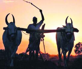 एकमुश्त कर्ज भुगतान का लाभ लें किसान