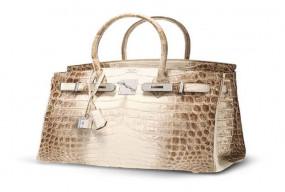 अजब-गजब: दुनिया का यह सबसे कीमती बैग, करोड़ों रुपए में हुई थी इसकी नीलामी