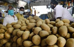 भूटान से 31 जनवरी तक आलू आयात के लिए नहीं होगी लाइसेंस की जरूरत