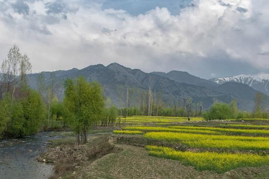 जम्मू-कश्मीर के लिए नए भूमि कानून के खिलाफ पीडीपी का विरोध प्रदर्शन नाकाम