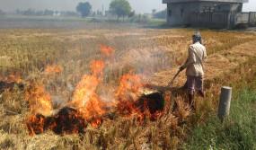 उप्र : डीजीपी ने पुलिस अधिकारियों से पराली जलाने की जांच करने को कहा