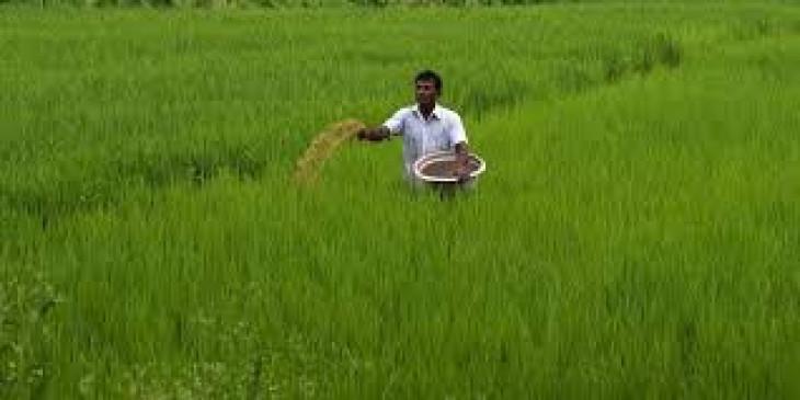 Agriculture: केंद्र ने 234.68 करोड़ रुपये की 7 कृषि प्रसंस्करण क्लस्टरों को दी मंजूरी