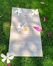 आहना को मिला अमिताभ का हस्तलिखित पत्र, हुईं गदगद