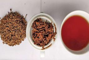OMG: भारत की इस दुर्लभ चायपत्ती की दुनियाभर में है डिमांड, जिसकी कीमत है 75 हजार रुपए किलो