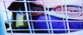 अर्णब की गिरफ्तारी पर बीजेपी की नाराजगी अनुचित: कांग्रेस