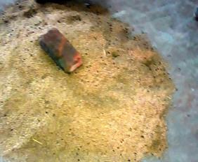 धान की बोरियों में भर दिए ईंट, धान की क्वालिटी भी खराब