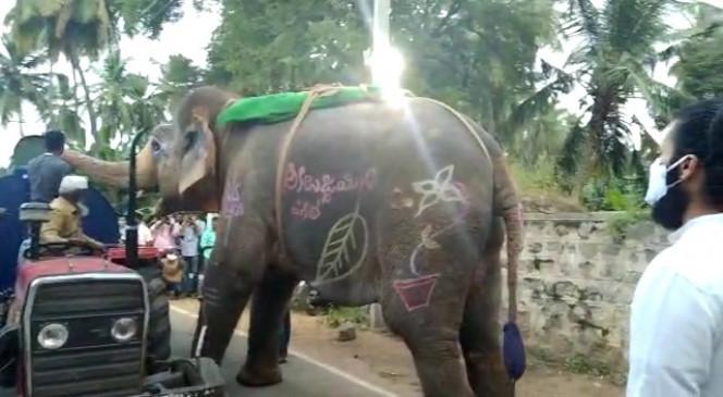तेलंगाना में हाथी ने रोका पानी भरा टैंकर, वीडियो वायरल