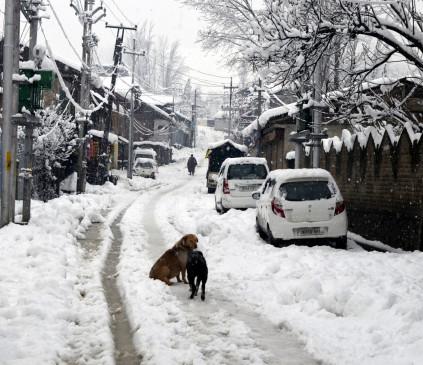 जम्मू एवं कश्मीर के ऊंचे क्षेत्रों में मौसम की पहली बर्फबारी