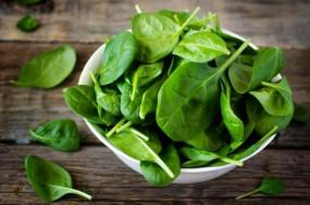 Health: सर्दियों में बीमारियों से बचने के लिए खाए पालक, जानिए इसके पांच हेल्थ बेनिफिट