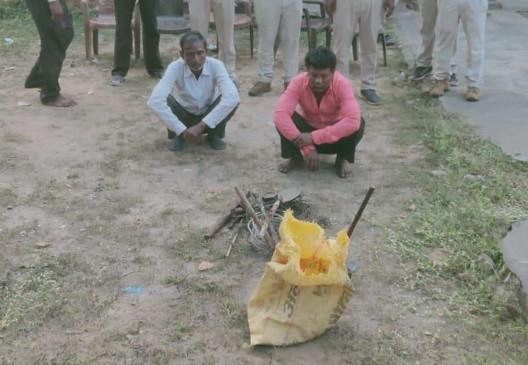 करंट फैलाकर किया जंगली सूकर का शिकार, दो गिरफ्तार