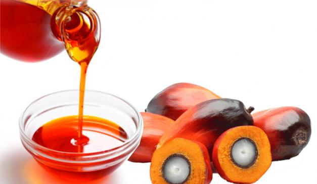 Edible oil prices: खाद्य तेल की बढ़ती कीमतों से चिंता में सरकार, पाम ऑइल की इंपोर्ट ड्यूटी 37.50 फीसदी से 27.50 की
