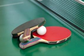 आठ महीने बाद अंतर्राष्ट्रीय टेबल टेनिस की शानदार वापसी