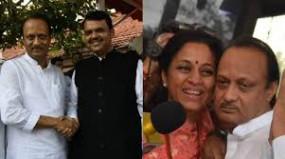 शिवसेना का मतलब महाराष्ट्र नहीं, फडणवीस बोले - अजित का दर्द मुझे मालूम है, लेकिन नहीं बोलूंगा