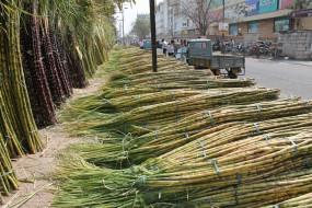 उप्र : विरोध प्रदर्शन के दौरान गन्ना किसान की मौत