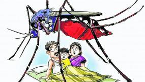 कोरोना मरीजों के बढ़ते आंकड़ों के बीच डेंगू-मलेरिया नियंत्रण में