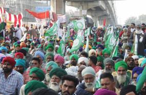 किसानों की एमएसपी कानून की मांग क्यों है अव्यावहारिक, जानिए 5 कारण