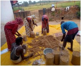 मशरूम उत्पादन से आदिवासी महिलाओं को मिली अजीविका -दो स्वसहायता समूहों से जुड़ी 24 महिलाएं