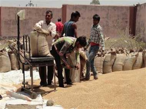 एमएसपी पर अनाज बेचने आगे नहीं आ रहे महाराष्ट्र के किसान, लक्ष्य पूरा नहीं कर सकी सरकार