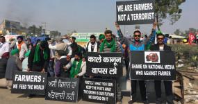Farmer Protest: किसान 13 जनवरी को जलाएंगे तीनों कृषि कानूनों और बिजली बिल की प्रतियां
