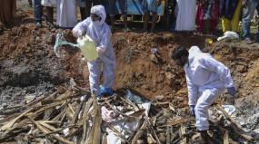 Bird Flu in Madhya Pradesh: इंदौर और नीमच में कुक्कुट और चिकन बाजार सात दिन के लिए बंद