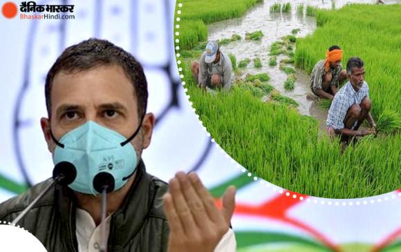 कृषि कानूनों को लेकर प्रेस कांफ्रेंस में बोले राहुल गांधी- बीजेपी वाले मुझे शूट करवा सकते हैं