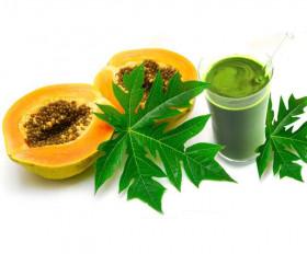 Health: पीपीते के पत्तों का रस है औषधीय गुणों से भरपूर, जानिए इसके 5 फायदे