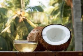 नारियल का तेल बालों के लिए है सबसे बेहतर, बेजान बालों से मिले छुटकारा- एक्सपर्ट ने बताए ये 5 फायदें