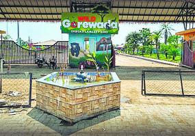 गोरेवाड़ा इंटरनेशनल जू में बसों की कमी, पर्यटक परेशान