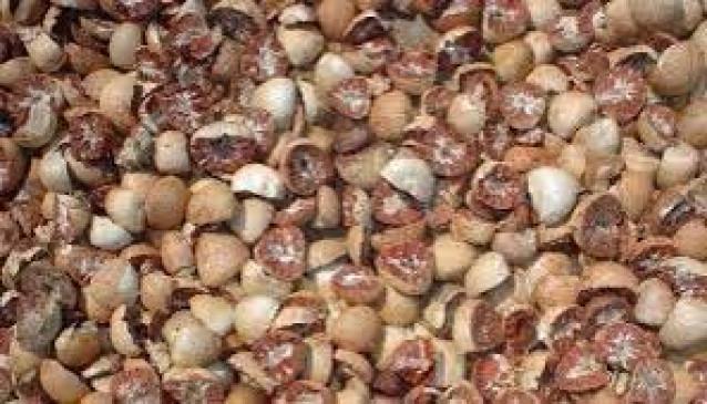 नागपुर :  सुपारी व्यापारियों से 1.34 करोड़ रुपए धोखाधड़ी
