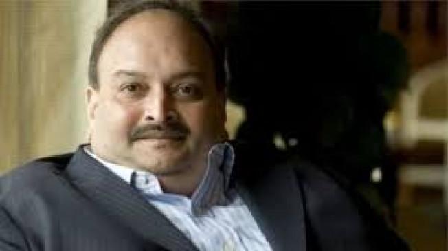 पीएनबी घोटाला : ईडी ने जब्त की चोकसी की 14 करोड़ 45 लाख की संपत्ति