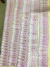 बालाघाट - स्कैनर-कलर प्रिंटर से बनाए 4.94 लाख के नकली नोट, 4 गिरफ्तार