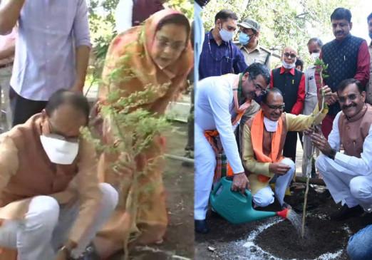 62वें बर्थ-डे पर पत्नी के साथ सीएम शिवराज ने किया पौधरोपण, मोदी-कमलनाथ ने दी शुभकामनाएं
