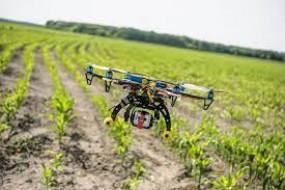 महाराष्ट्र में ड्रोन से चार करोड़ पौधे लगाने का सरकारी लक्ष्य