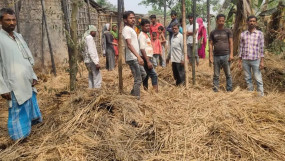 बिहार: अररिया में झोपड़ी में गेंहूं की बालियां सेंक रहे 6 बच्चों की आग की चपेट में आने से मौत, भागलपुर में में तीन की जलने से गई जान