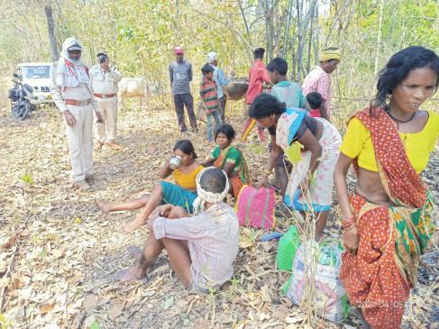 भालू के हमले से बैगा पति-पत्नी घायल - महुआ फूल चुनने गए थे जंगल