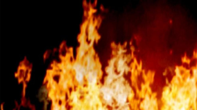 बांधवगढ़ के बाद बरेला से मंडला तक के जंगलों में भड़की आग