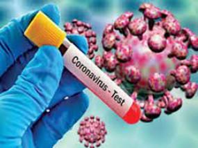 Corona graph : युवा मोर्चा की हेल्पलाइन शुरु, नागपुर में 4182 कोरोना संक्रमित, अमरावती में बिगड़े हालात