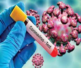 Corona : नागपुर में 365 नए मरीज, बढ़ा ठीक होने वालों का आंकड़ा