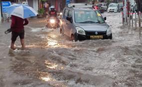 मुंबई में ताऊ ते : तूफान से तिनके की तरह बिखरे पेड़, समुद्र में उठी 12 फीट ऊंची लहर, भारी बारिश के बीच बढ़ा खतरा