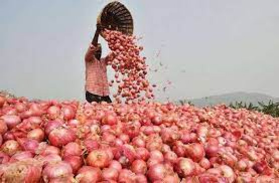Onion : खोली गई एशिया की सबसे बड़ी प्याज मंडी, किसानों ने ली राहत की सांस