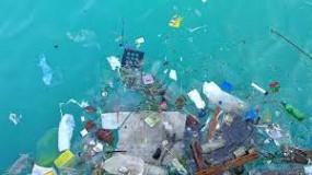 समुद्र की गंदगी को लेकर हाईकोर्ट है चिंतित