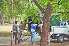 नागपुर शहर में घूम रहा तेंदुआ नहीं लग रहा दल के हाथ, कर रहा शिकार