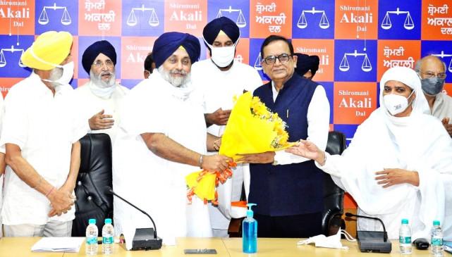 32 फीसदी दलित वोट पर अकाली दल का बड़ा दांव, बीजेपी- कांग्रेस के लिए बड़ी चुनौती बनेगा नया गठबंधन? - bhaskarhindi.com